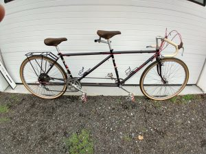 Sans Fenders and Front Rack - Compass 44's!